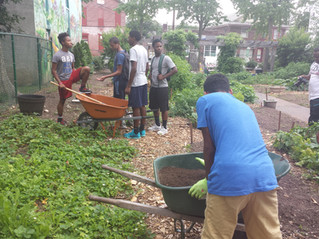 Students unearth importance of nutrition, gardening with summer program
