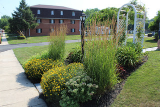 Boyertown, Pottstown residents can win up to $200 with Home Garden Contest
