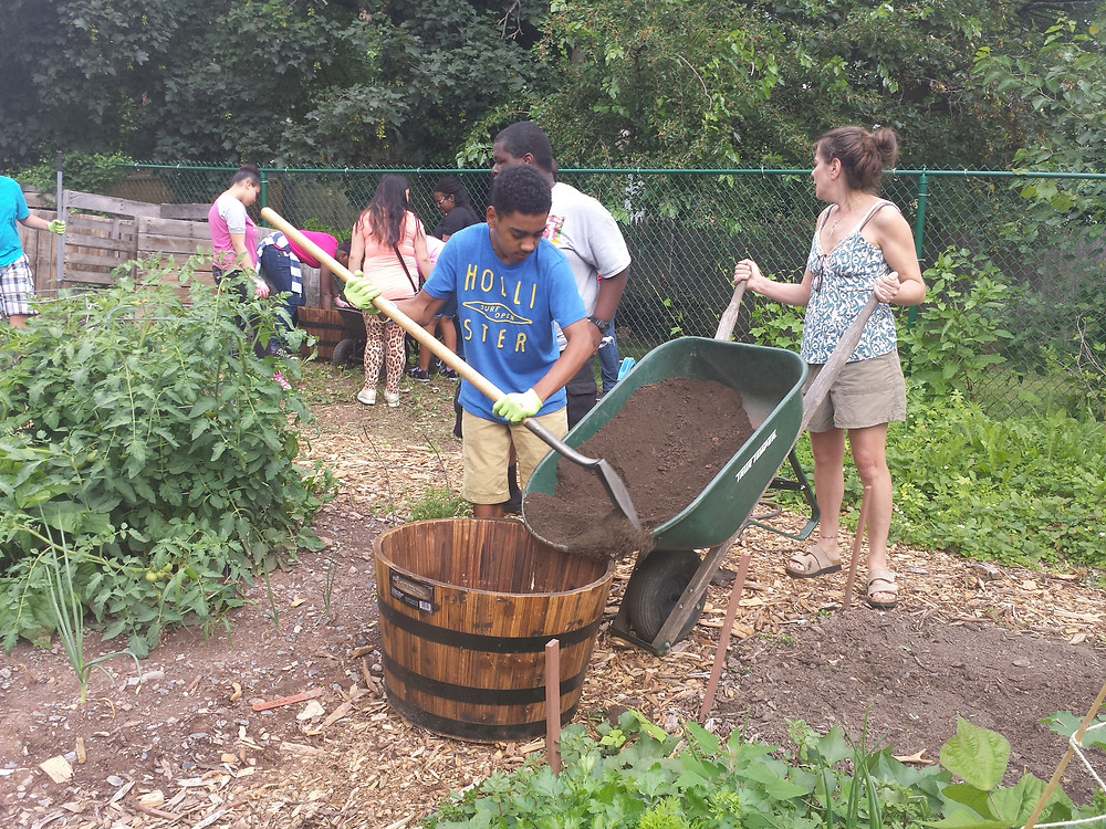 A Pottstown High School student shovels soil into a whiskey barrel in order to make a container garden.