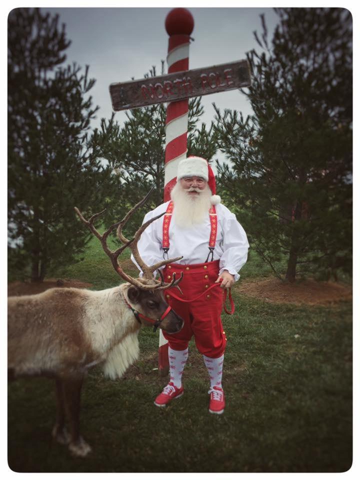 Santa Rooftop Reindeer