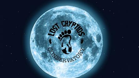 Black Moon Blog Banner (8).png