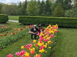 Tanyeli in the tulips