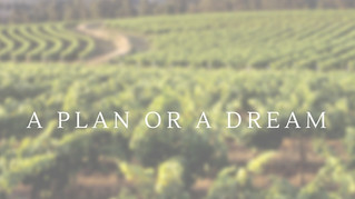 Do you have a Plan or a Dream?