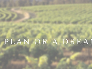 A Plan or A Dream