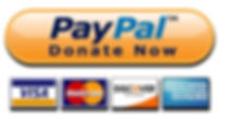 PayPal_Donate_Button_icon.jpg