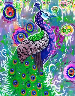"""Paradigm Peacock, 2014; 16x20"""""""
