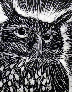 """Linoleum Owl, 2010; 11x14"""""""
