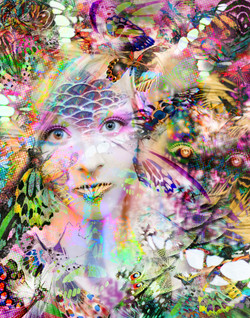 Metaphysical Metamorphosis '15