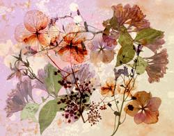 "Dried Flora, 2016; 11x14"""