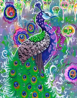 Paradigm Peacock
