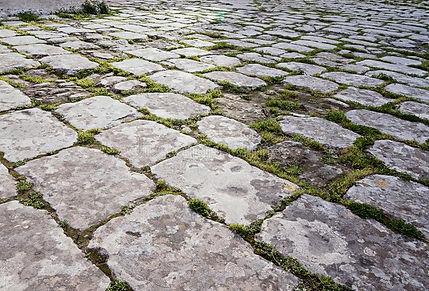老铺路石路的表面有发芽的青苔的-115838152.jpg