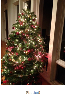 "Newsflash: Mom lets kids ""own the tree!"""
