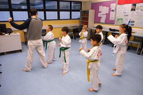 Taekwondo (Beginners)