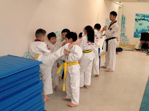 Taekwondo (Ages 5+)