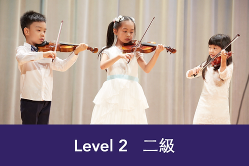 Violin Group Class Level 2