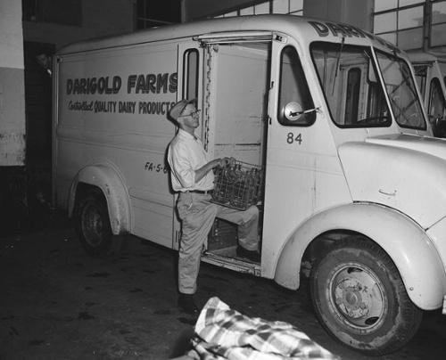 Darigold-driver-1961-656x530