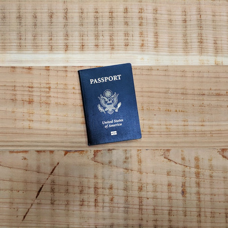 The Benefits of Using Online Visa Services