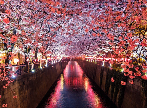 How to Plan a Trip to Japan with Your Girlfriend