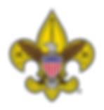 Scouts_CleanLogo_450x475.png