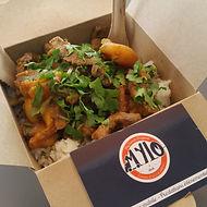 Plat Mylo: plat d'agneau au curry, plat de l'Inde