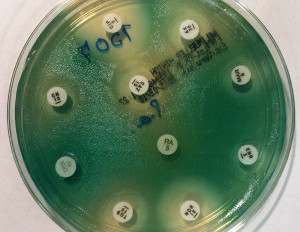 Antimicrobial Devices: Where Are They?