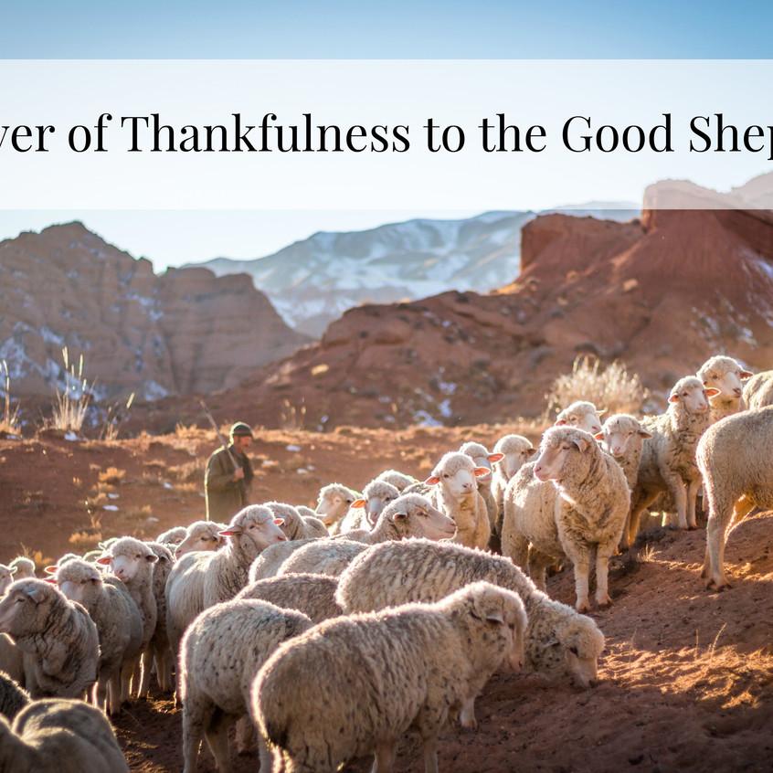 thankfulness title