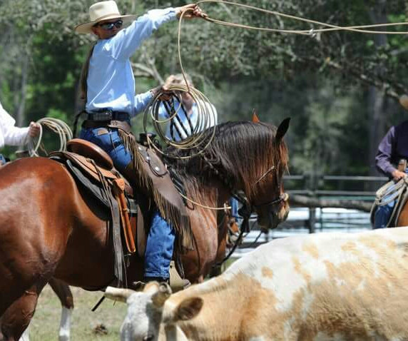 Ranch Horse Style: Visual, partnership mentality required