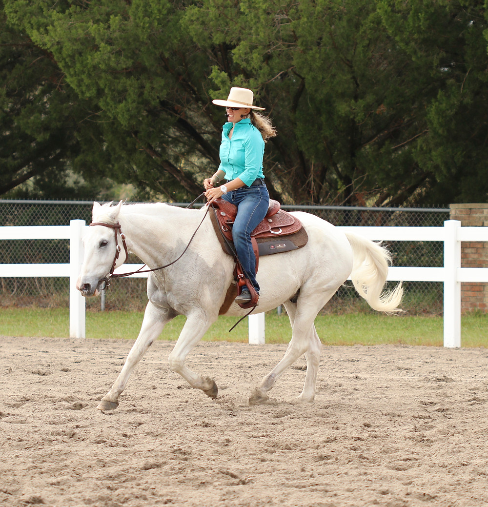 Reining Style: loose rein, using topline, while maintaining focus on rider; note ears of horse in this image