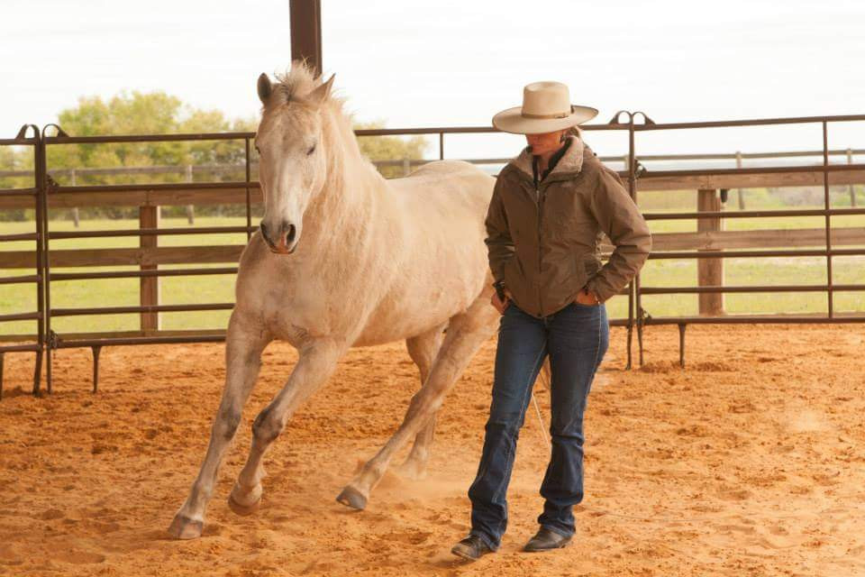 """Liberty Style: Visual, requires horse and human to have a """"bond"""" of respect and trust"""