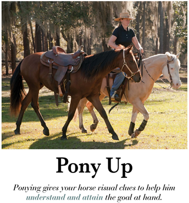 """DIGITAL DOWNLOAD of Chrome Ch 9 """"Pony Up"""""""
