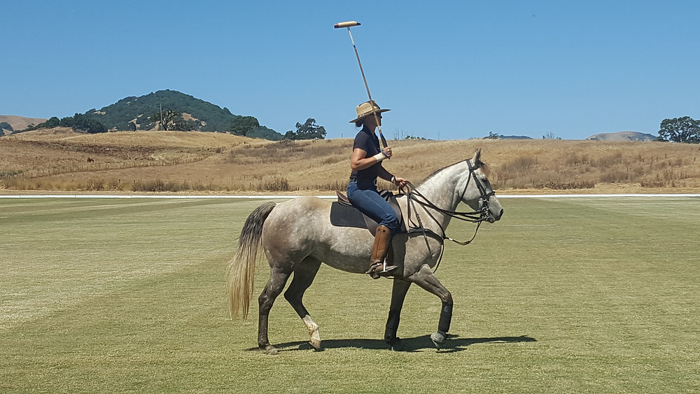 Polo Style: upright, visual, emotional stability required, true 51:49 partnership also required