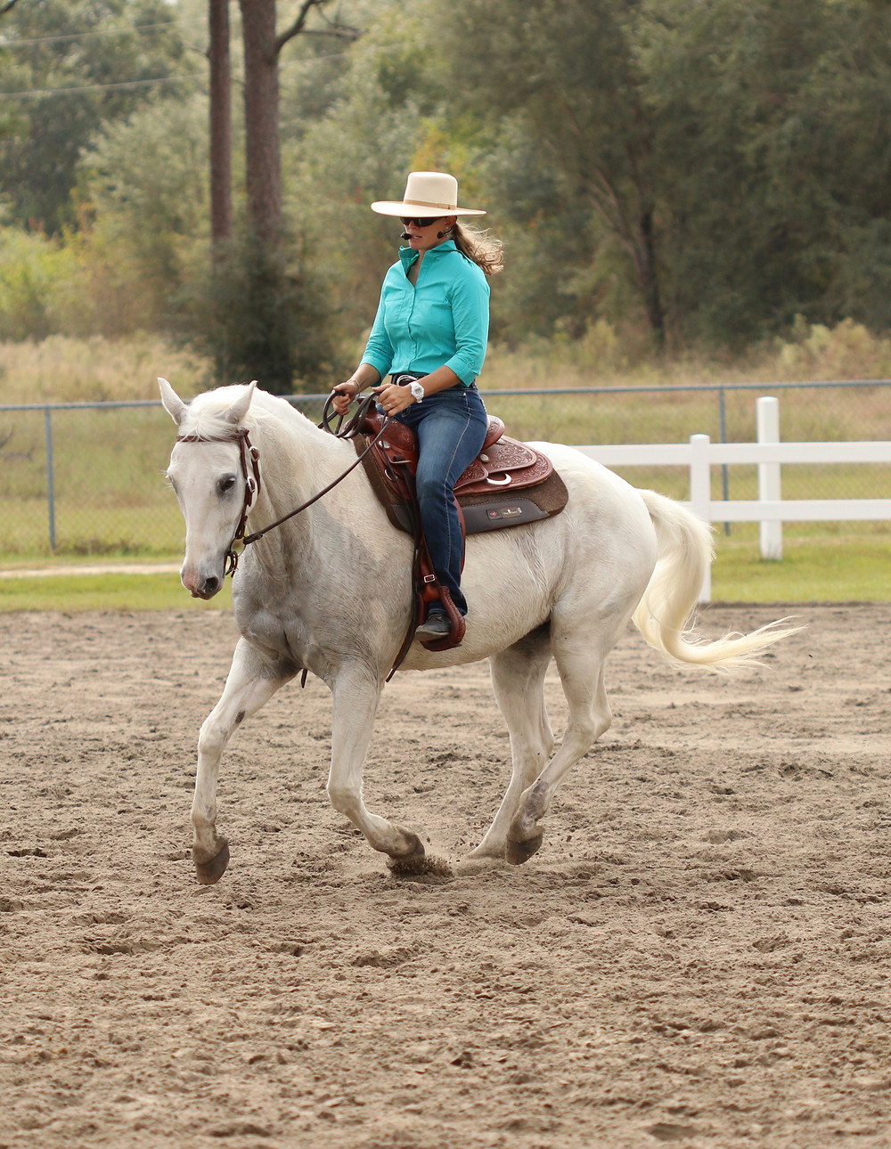 Dressage Style: collected rein, upright posture, requires horse to focus intently on rider's positoin and movemets