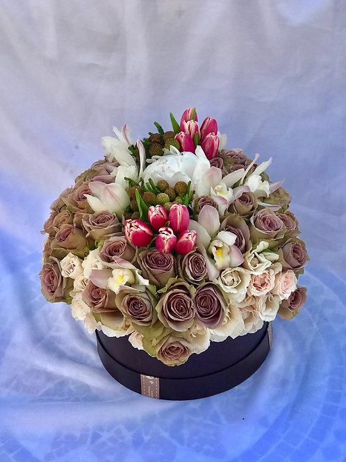 Floral Rich Amnesia