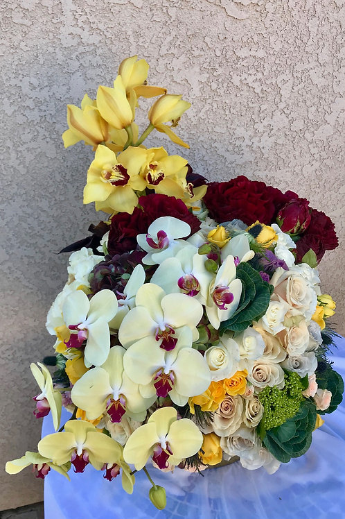 Medley of Exotic Blooms