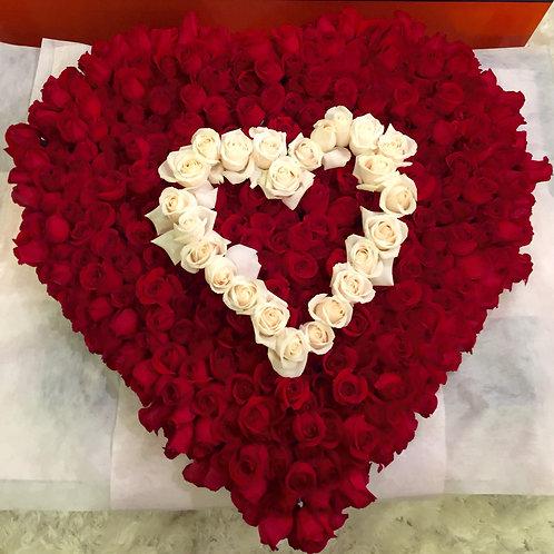 "Roses Galore ""Love Statement"""