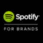 spotify for brands_annakiya.png