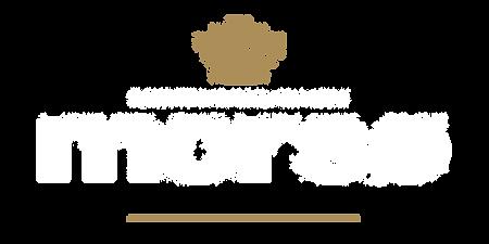 Logo MORSOE Scan-Line Rennes