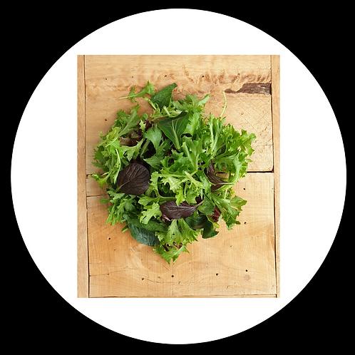 Salad - Mesclun Mix