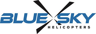 BlueSky_Logo_Blue_Black copy.jpg