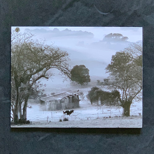 """Foggy Morning"" Greeting Card"