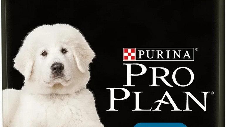 PRO PLAN Large Robust Puppy au poulet 12kg