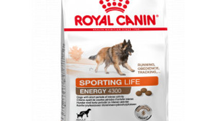 Royal Canin Sporting Energy 4300 pour chien 15kg