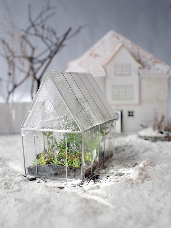 Winter Greenhouse, 2019