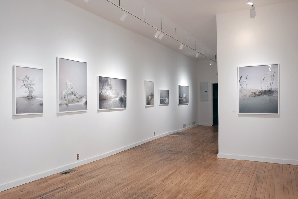 Vanishing Shoreline, PhotoCentric Gallery