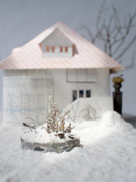 Winter Garden, 2019