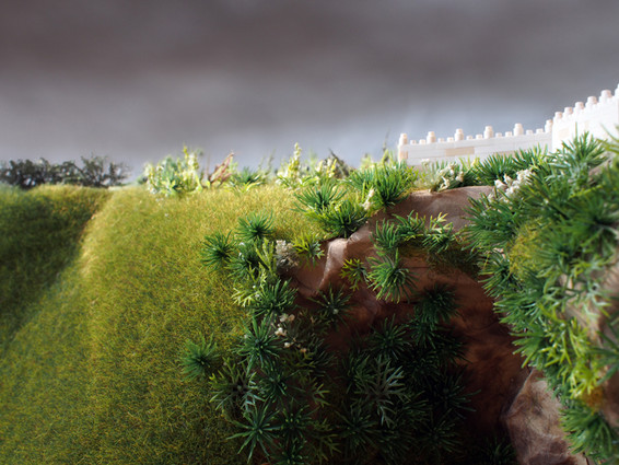 My View of the Hillside, 2014