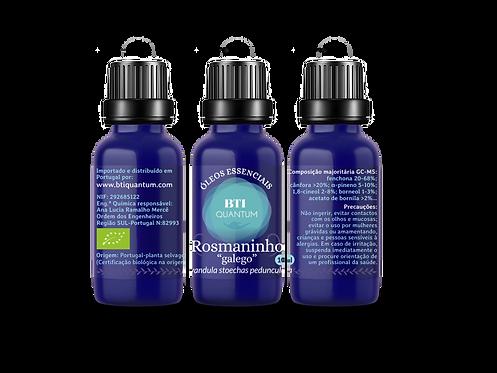 Óleo essencial de Rosmaninho galego SELVAGEM (Lavandula stoechas pedunculata)