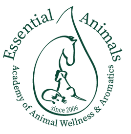 ESAN_logo_transparent.png