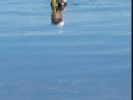 Lake Beulah 11/24