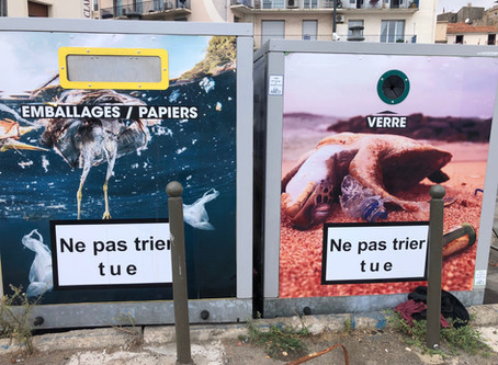 Vive la Mülltrennung?